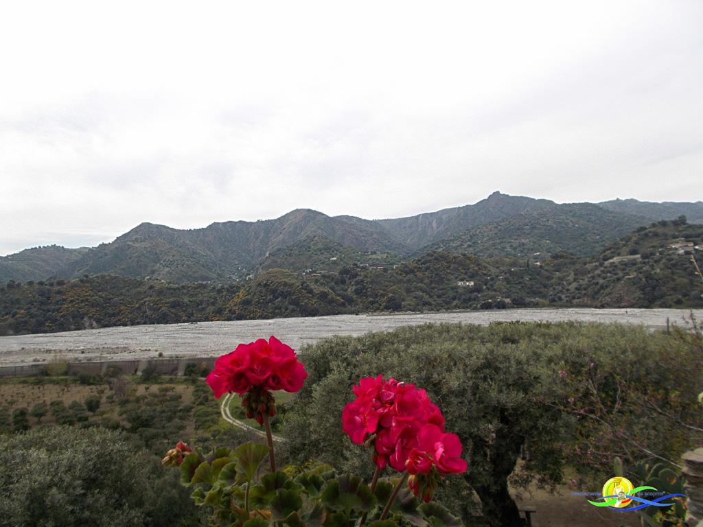 Mediterraneo da scoprire-Amendolea
